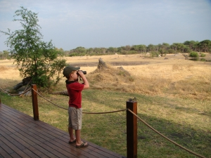 The Hide, Hwange