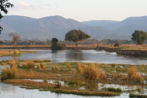 Zambezi River, Mana Pools